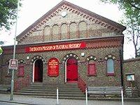 Booth Museum přírodní historie