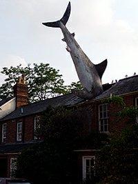 Headingtonský opravdový žralok