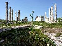 Sýrie Apamea kolonáda