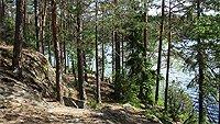 Nuuksio park Helsinky